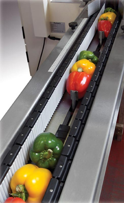 P325E-T -7 - Trayless Pepper Infeed